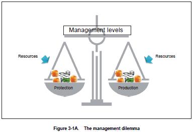common management dilemmas